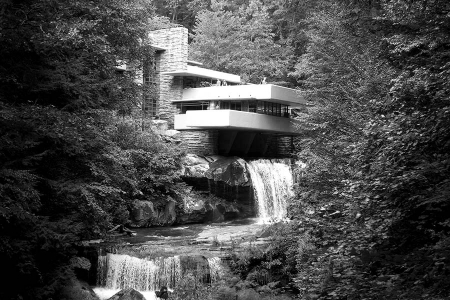 Fallingwater In Summer